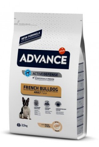 Advance Bulldog Francés Adulto